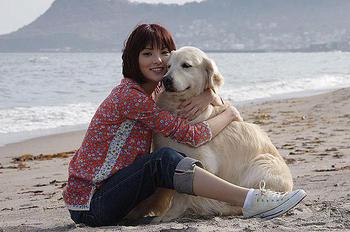 犬と私の.jpg